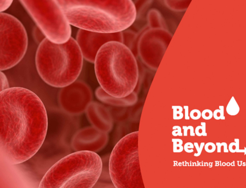 Rapport fra Blood & Beyond